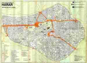 JUGAL_MAP petite